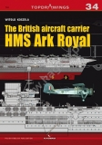 The British aircraft carrier HMS Ark Royal