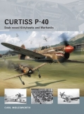 Curtiss P-40 Snub-nosed Kittyhawks and Warhawks