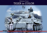 Tiger in Color (English)