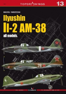 Ilyushin Il-2 AM - 38 all models