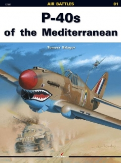 P-40 of the Mediterranean