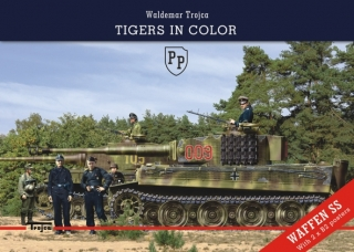 Tigers in Color (English)